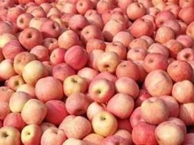 三人小品剧本卖苹果