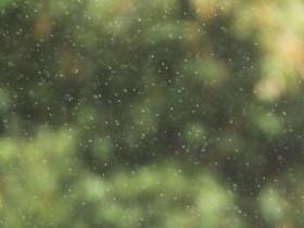 心理剧剧本青春的毛毛雨