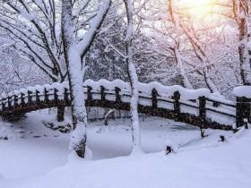 下雪幽默句子 用雪表达心情的诗句