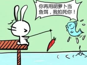 小白兔的笑话 小白兔的笑话大全笑破你的肚子
