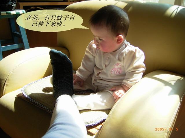 儿童能听懂的冷笑话