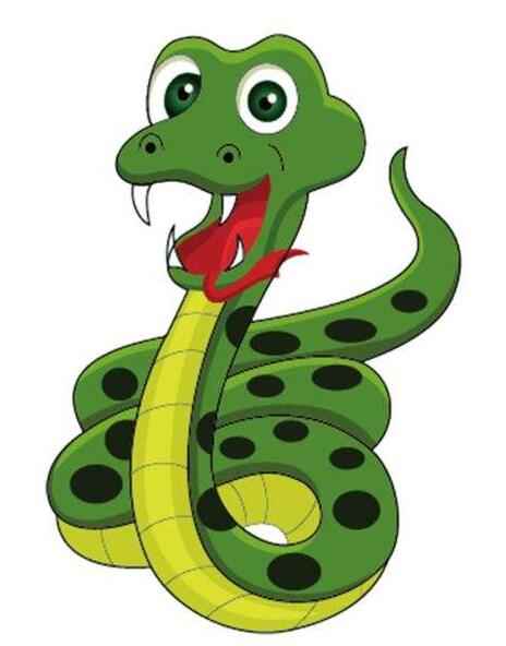 老野蛇对花野蛇
