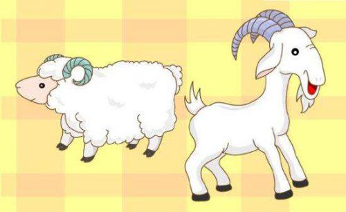 王二小放的是山羊还是绵羊
