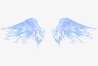 如果你有一双翅膀你会做什么
