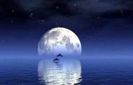 赞美月亮的诗句