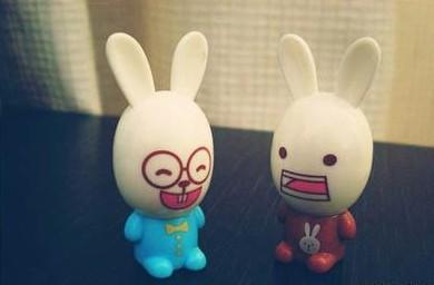 小白兔冷笑话 小白兔你掉毛吗的笑话